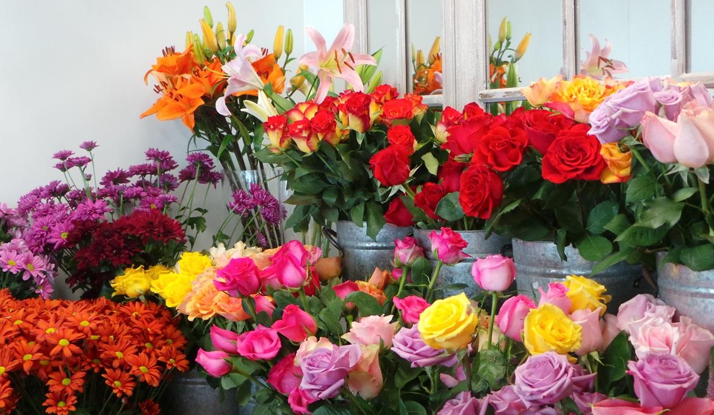 Hoa để bán cần được giữ tươi lâu và nở chậm.