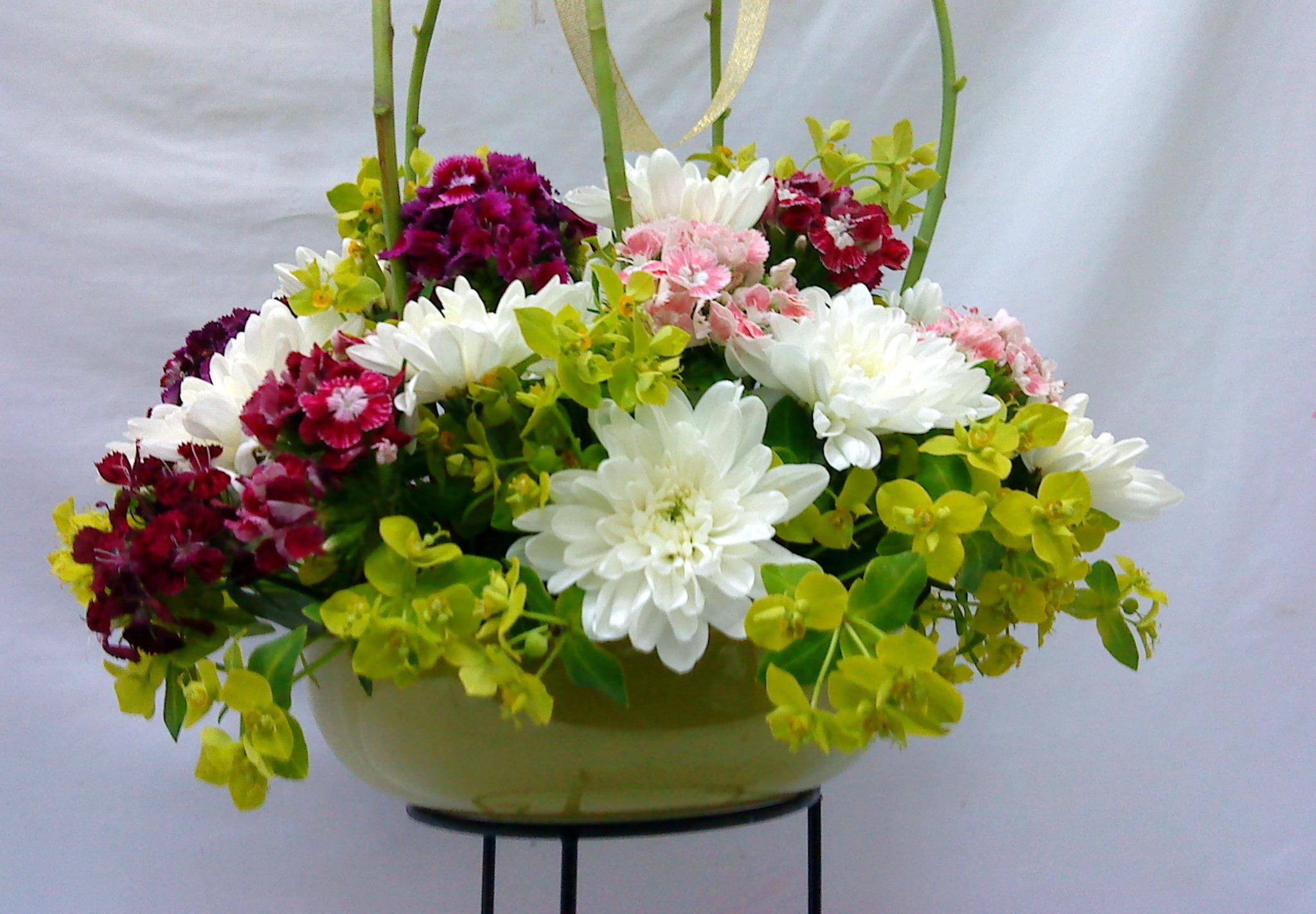 Cách giữ hoa cúc tươi lâu để bày trang trí ngày tết