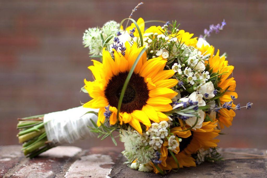 Hoa hướng dương cũng được nhiều bạn gái lựa chọn trong chụp ảnh kỷ yếu.